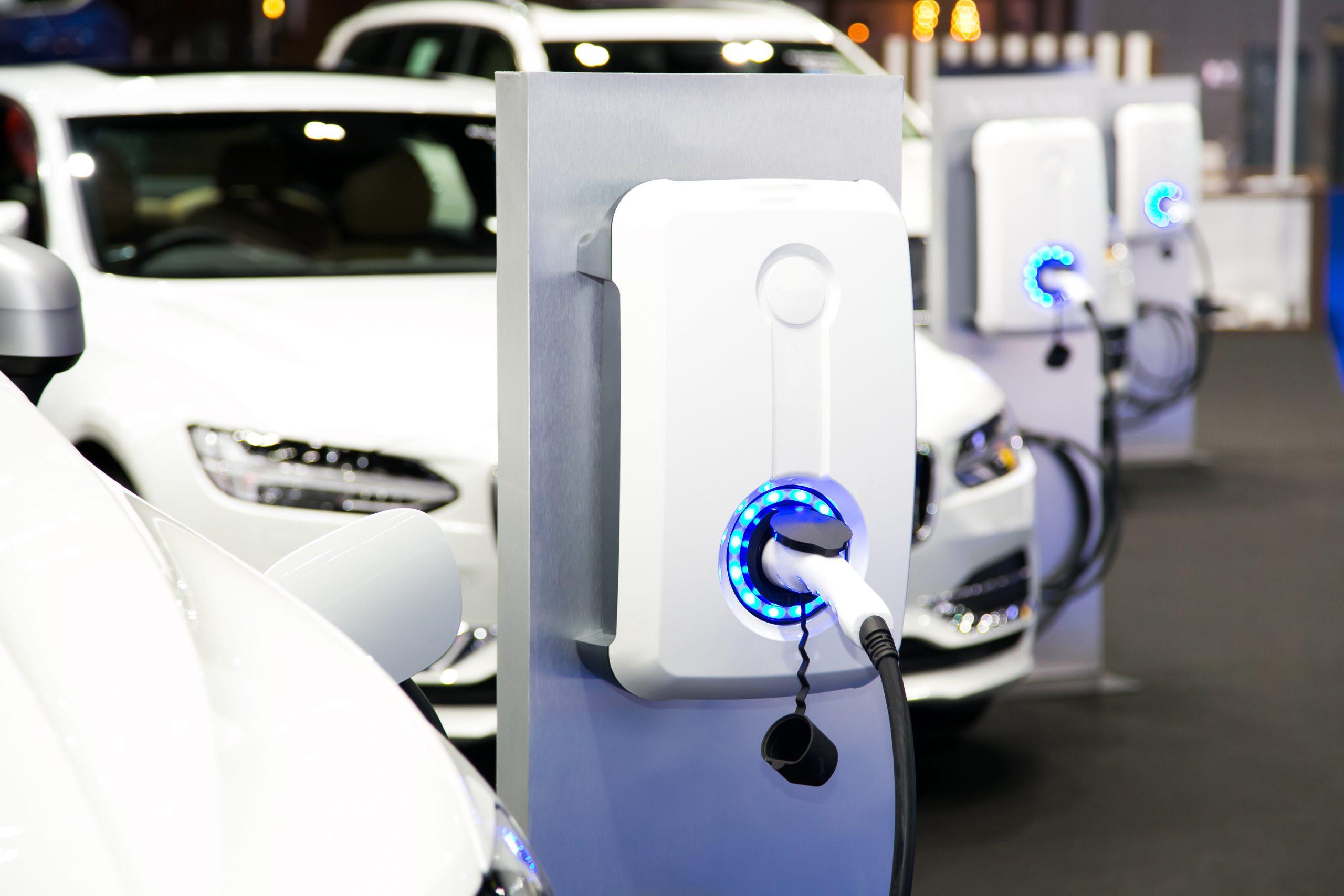 Flotte de véhicules électriques bornes de recharge